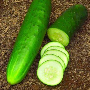 Cucumber Straight Eight