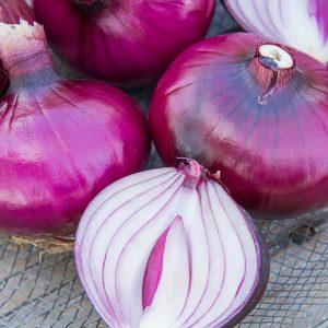Onion Red Zeplin